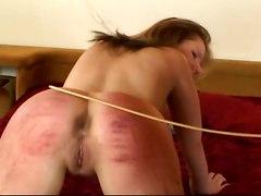 Begging for Punishment 2