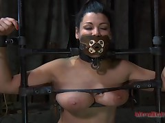 Beauty gets their way vagina satisfied whilst inside a cage
