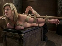 Big tittied Sara Jay gets toyed plus harrowing with a mousetrap