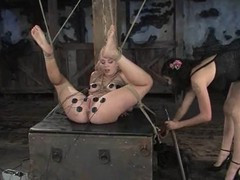 Sweetie gets her tits bondaged plus then hogtied