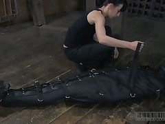 Lovely beauty acquires facial punishment by means of s&m work